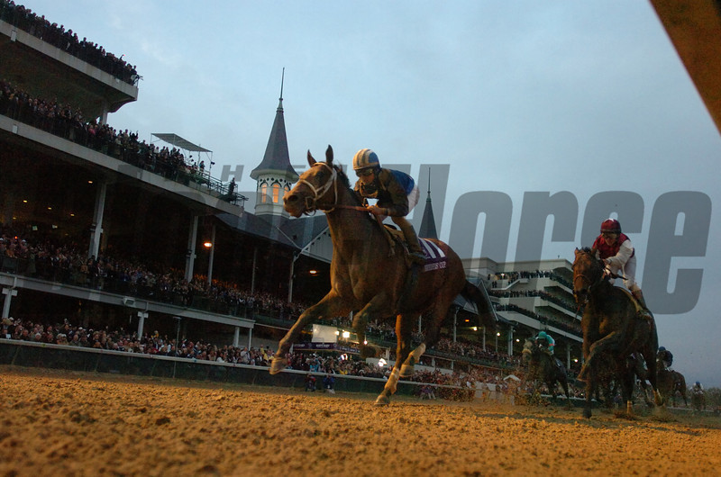 Photo by Skip Dickstein - Dark skies threaten the winner Invasor as he wins The Breeders'  Cup Classic Powered by Dodge held today November 4, 2006 at Churchill Downs in Louisville, Kentucky.