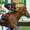 Photo By Skip Dickstein -#4 Ginger Punch wins the Distaff at Monmouth October 27, 2007.