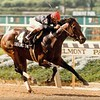 Seeking the Gold wins the 1988 Dwyer Stakes<br /> Photo by: Skip Dickstein