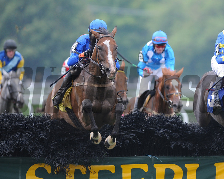 Mabou (by Dynaformer) wins the New York Turf Writers Cup Steeplechase H. (gr. 1) at Saratoga.