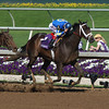 Ashado wins the Distaff at Lone Star Park<br /> October 30, 2004<br /> ALEXANDER BARKOFF PHOTO