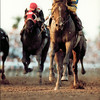 A.P. Indy winning 1992 Breeders' Cup.<br /> Skip Dickstein Photo