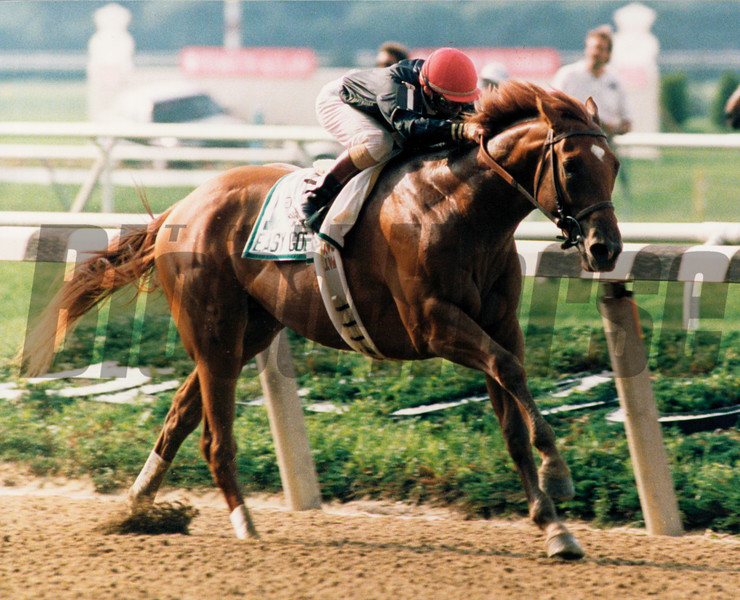 Easy Goer wins the 1989 Belmont Stakes..<br /> Photo by Skip Dickstein