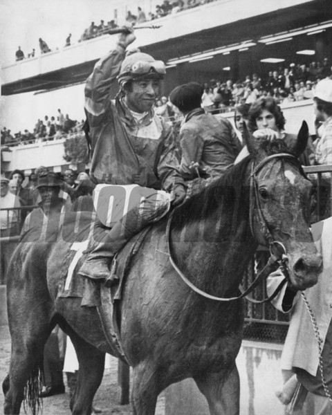 Waya wins the 1979 Saratoga Springs Cup Handicap<br /> Photo by: Bob Coglianese