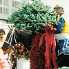 Winning Colors after winning the 1988 Kentucky Derby at Churchill Downs.<br /> Photo by: Anne M. Eberhardt