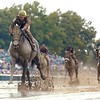 Midnight Lute wins the 2007 Breeders' Cup Sprint<br /> Skip Dickstein Photo