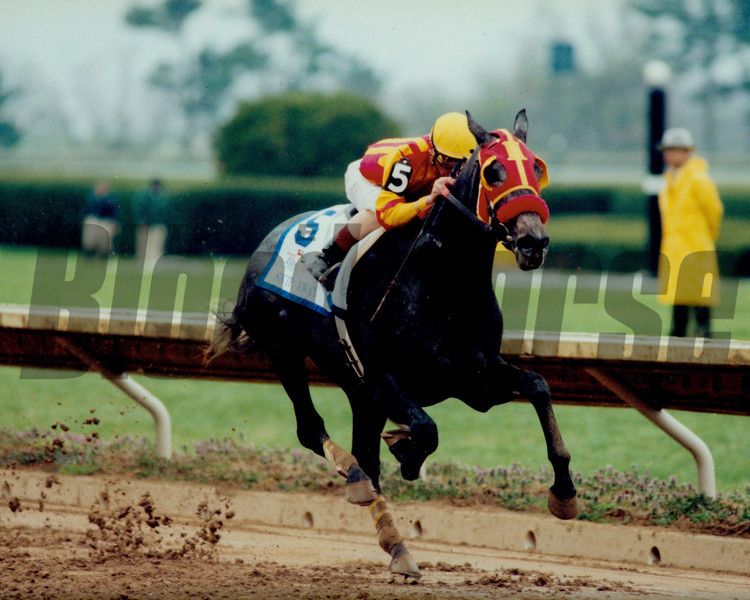 Skip Away wins the 1996 Blue Grass Stakes at Keeneland<br /> Photo by: Anne M. Eberhardt