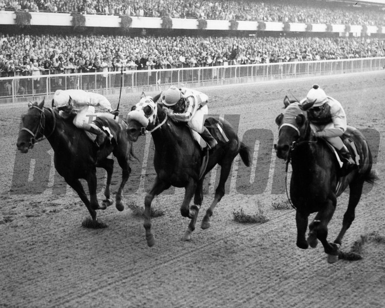 Personality (far right)<br /> Photo by: Bob Coglianese