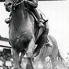 Affirmed wins the 1979 Woodward Stakes<br /> Bob Coglianese Photo