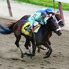 The Belmont States, Birdstone overtakes Smarty Jones and wins the Belmont Stakes June 5, 2004<br /> Rick Samuels Photo
