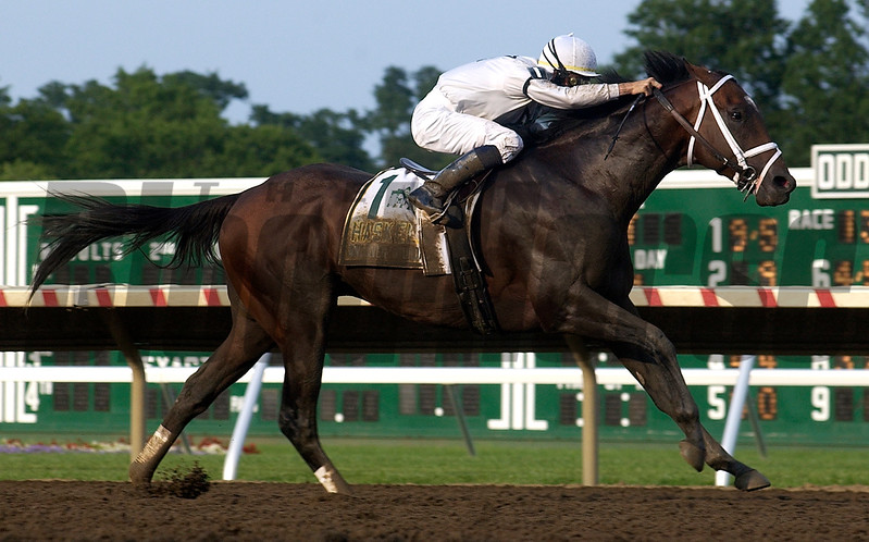 Any Given Saturday, with Garrett Gomez up, wins the<br /> 40th Haskell Invitational at Monmouth Park.<br /> Rick Samuels Photo