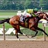 Serena's Song wins the 1995 Mother Goose Stakes at Belmont Park.<br /> Photo by: Adam Coglianese/NYRA