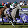 Augustin Stable's Forever Together wins the Emirates Airlines Breeders' Cup Filly & Mar Turf October 24, 2008.<br /> Photo by Skip Dickstein