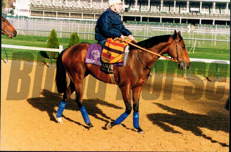 Hernando in 1994<br /> Photo by Anne M. Eberhardt
