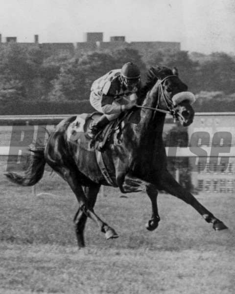 Mac Diarmida wins the 1978 Lawrence Realization Stakes<br /> Photo by: Bob Coglianese
