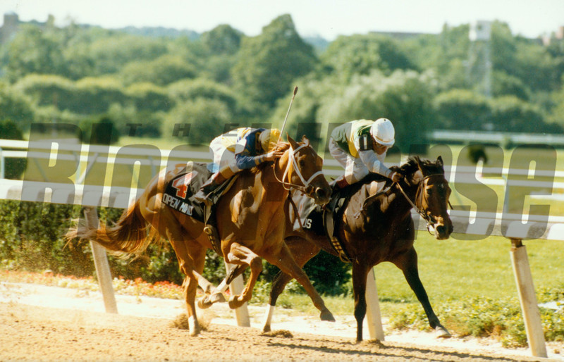 Open Mind wins the Mother Goose Stakes at Belmont Park.<br /> Photo by: Skip Dickstein