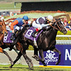 Six Perfections wins the 2003 Breeders' Cup Mile<br /> Photo by: Mike Corrado