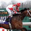 Hard Spun, #10, wins the Lane's End Stakes (gr. II) at Turfway Park on March 24, 2007, in Florence, Kentucky.<br /> Photo by Anne M. Eberhardt