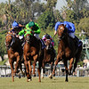 Desert Code wins the Breeders' Cup Turf Sprint at Santa Anita October 25, 2008.  Photo by Skip Dickstein