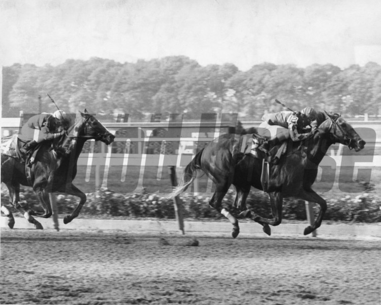 What A Summer winning 1977 Fall Highweight Handicap at Belmont Park<br /> Photo by Bob Coglianese