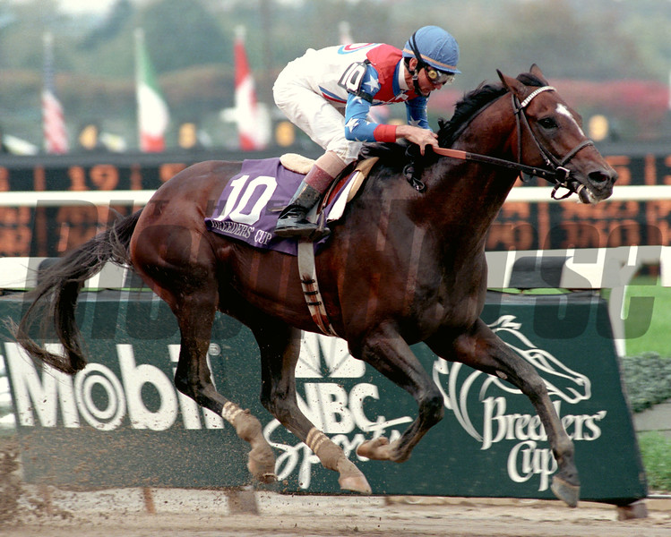 Cigar wins the Breeders' Cup Classic at Belmont Park on October 28, 1995.<br /> Photoby: Adam Coglianese/NYRA