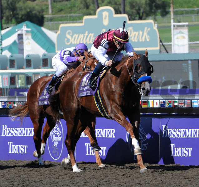 Midshipman wins the Breeders' Cup Juvenile at Santa Anita October 25, 2008.  Photo by Skip Dickstein