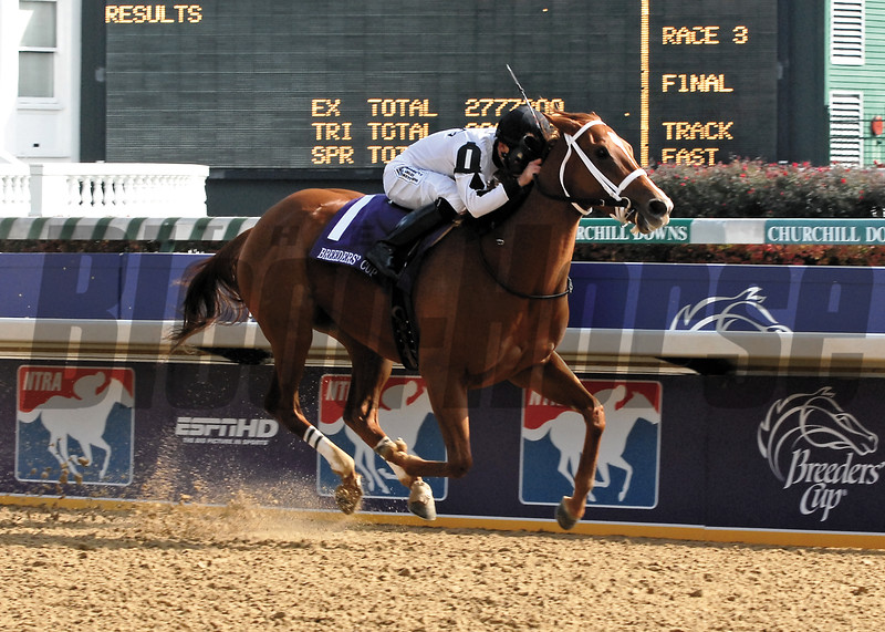 PHOTO BY ALEXANDER BARKOFF BREEDERS CUP 2006<br /> Dreaming of Anna wins the Breeders' Cup Juvenile Fillies<br /> at CHurchill Downs. Rene Douglas is the winning jockey
