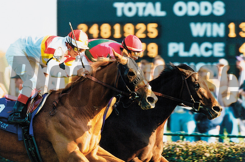 Da Hoss wins the 1998 Breeders' Cup Mile over Hawksley Hill (outside).<br /> Skip Dickstein Photo