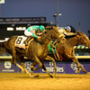 Caption: Blame with Garrett Gomez wins the Breeders' Cup Classic at Churchill Downs on Nov.6, 2010, in Lexington, KY.<br /> Photo by Anne M. Eberhardt