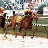 Open Mind wins the 1989 Kentucky Oaks at Churchill Downs<br /> Anne M. Eberhardt Photo