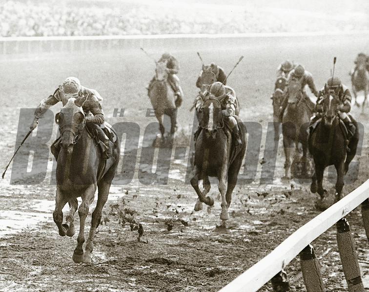 Temperance Hill wins the 1980 Belmont Stakes with Genuine Risk (center) second.<br /> Bob Coglianese Photo
