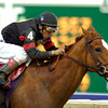 Jockey Rafael Bejarano and GINGER PUNCH win The breeders' Cup Distaff at a muddy Monmouth Park<br /> Rick Samuels Photo