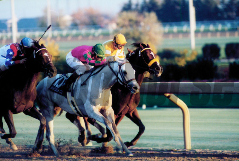 Alphabet Soup wins the 1996 Breeders' Cup Classic<br /> Skip Dickstein Photo