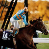Unbridled, 1990 Breeders' Cup Classic<br /> Skip Dickstein Photo