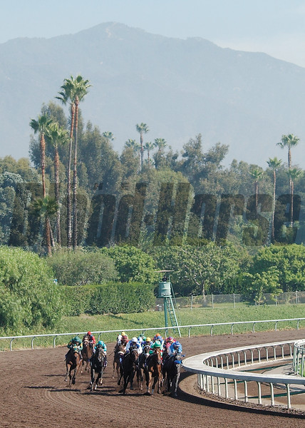 Halfbridled wins the 2003 Breeders' Cup Juvenile Fillies<br /> Rick Samuels Photo