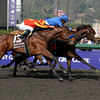 Caption: <br /> Vale of York with Ahmed Ajtebi wins the Juvenile, Lookin at Lucky second outside.<br /> Breeders' Cup Saturda at Oak Tree/Santa Anita on Nov. 7, 2009, in Pasadena, California.<br /> Origs image<br /> PHoto by Anne M. Eberhardt