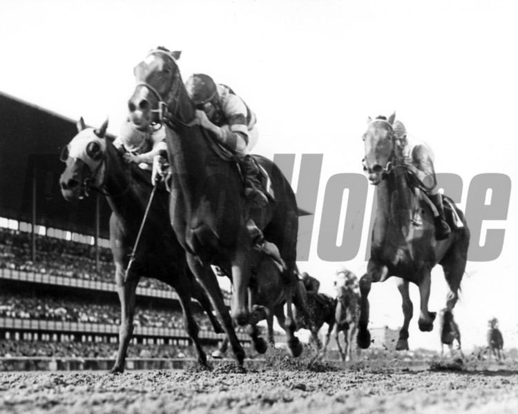 What A Treat with John Rotz up beating Terentia in the 1965 Gazelle Handicap at Aqueduct.<br /> Photo by Bob Coglianese
