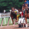 Charismatic with jockey Chris Antley in the 1999 Belmont stakes