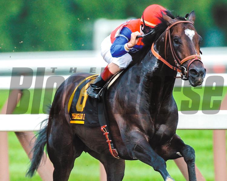Medaglia d'Oro wins the 2002 Jim Dandy Stakes at Saratoga.<br /> Photo by: Adam Coglianese/NYRA