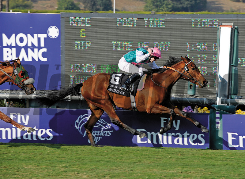 Caption: Midday with Thomas Queally wins the Emirates Airline Breeders' Cup Filly and Mare Turf.<br /> Breeders' Cup Friday at Oak Tree/Santa Anita on Nov. 6, 2009, in Pasadena, California.<br /> Origs2  image679<br /> PHoto by Anne M. Eberhardt