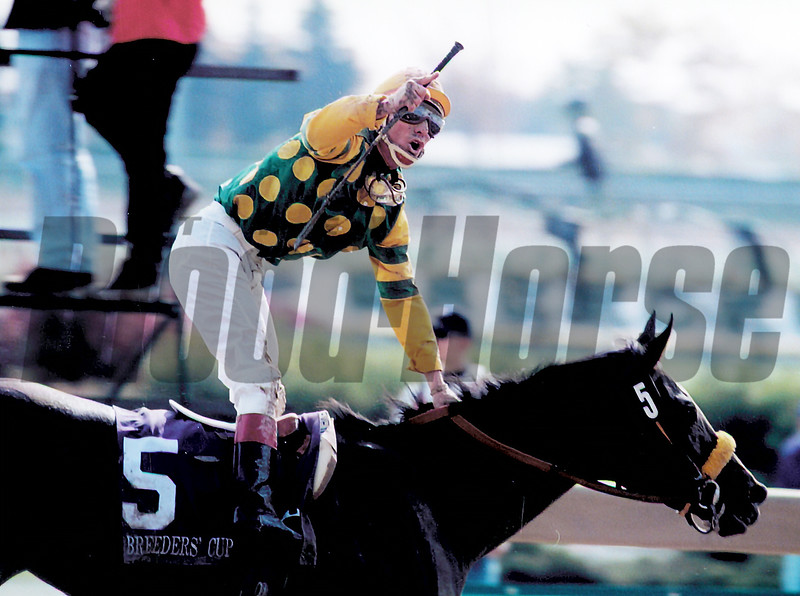 Storm Song wins the 1996 Breeders' Cup Juvenile Fillies<br /> Skip Dickstein