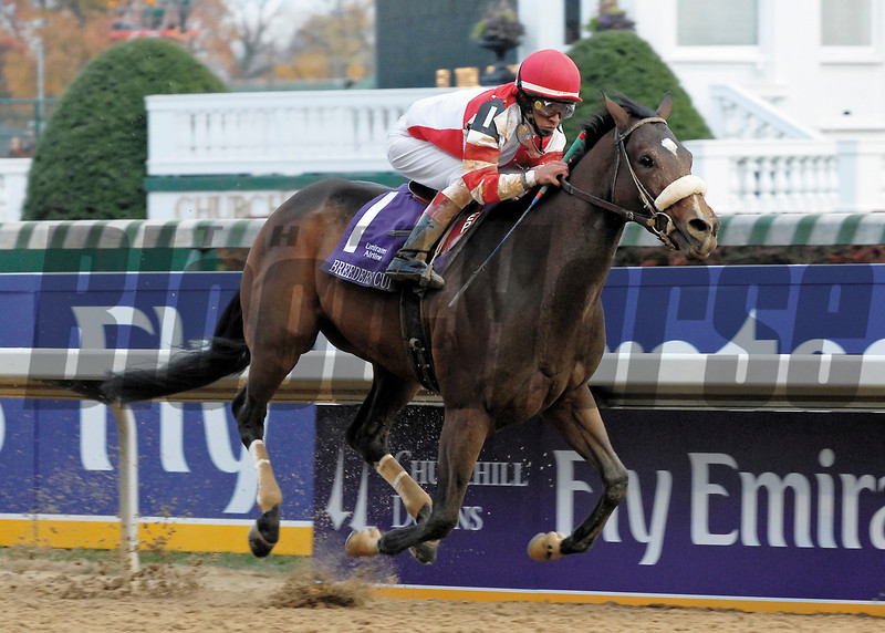 PHOTO BY ALEXANDER BARKOFF BREEDERS CUP 2006<br /> Round Pond Wins the Emirates AIrline Breeders' Cup Distaff at Churchill Downs. Edgar Prado was the winning jockey