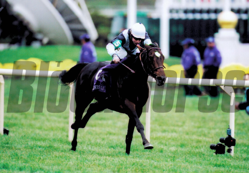 Domedriver wins the 2002 Breeders' Cup Mile<br /> Rick Samuels Photo