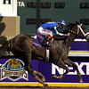 CAPTION: Ashado wins the distaff<br /> Date Oct. 30, 2004<br /> Breeders Cup day at Lone Star Park, October 2004, in Grande Prairie, Texas.<br /> DistaffOrigs1 image<br /> Photo by Anne M. Eberhardt