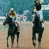 Holy Bull wins the 1994 Travers Stakes.<br /> Skip Dickstein Photo