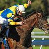 Street Sense with Calvin Borel beating Any Given Saturday to win in the Tampa <br /> Bay Derby at Tampa Bay Downs 3.17.2007<br /> Photo by: Pam DiOrio