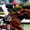 Easy Goer wins the 1989 Travers Stakes<br /> Skip Dickstein Photo