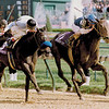 Pleasant Stage wins the 1991 Breeders' Cup Juvenile Fillies<br /> Skip Dickstein Photo