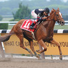 Ginger Punch wins the 2008 Ogden Phipps Handicap<br /> Coglianese Photos
