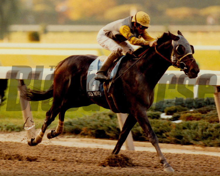 Sea Hero wins the 1992 Champagne Stakes.<br /> Photo by: Skip Dickstein